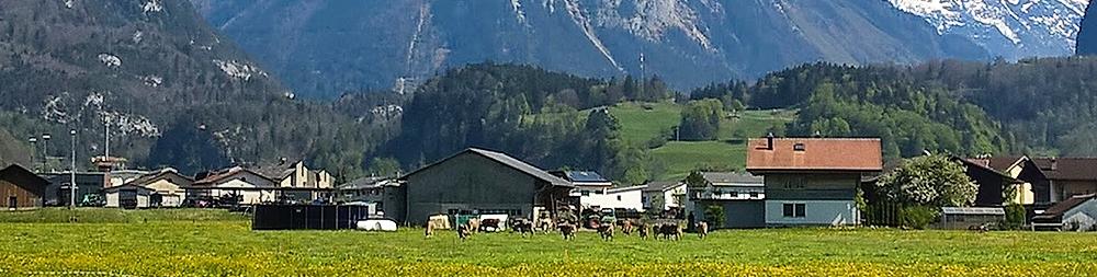 escursioni-svizzera